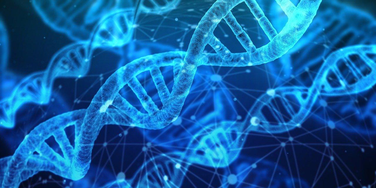 badanie genetyczne kleszcza kraków